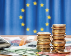 An image of the EU flag and budget