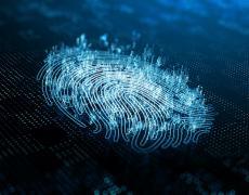A rendered image of a thumb print digital ID