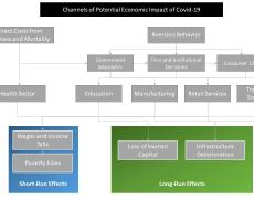 A chart of the various avenues through which the pandemic could affect economies.